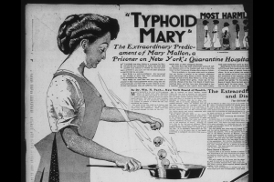 Newspaper article about Mary Mallon, Typhoid Mary